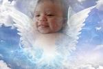 Angel Wes Salinas